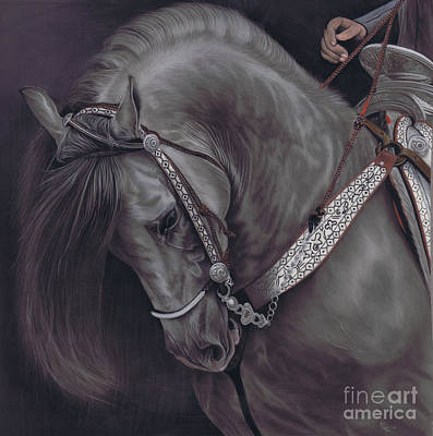 Karie-ann Cooper Royalty-Free and Rights-Managed Images - Spanish Horse by Karie-Ann Cooper