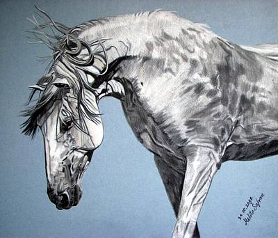 Art Print featuring the drawing Spanish Horse by Melita Safran
