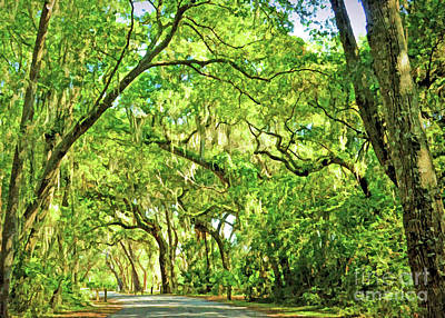 Photograph - Spanish Moss On Jekyll Island by Kerri Farley