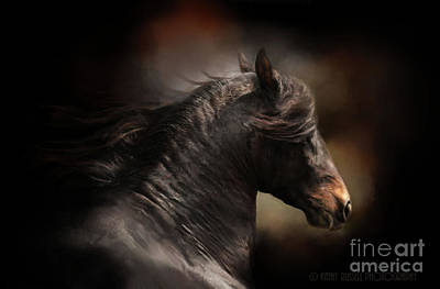 Spanish Stallion Art Print