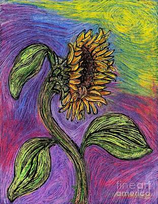 Lilacs Drawing - Spanish Sunflower by Sarah Loft
