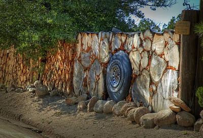 Photograph - Spare Tire by Fred Lassmann