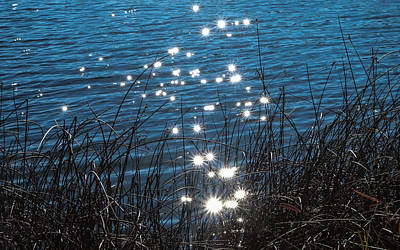 Photograph - Sparkles At Riverbend Ponds by Monte Stevens