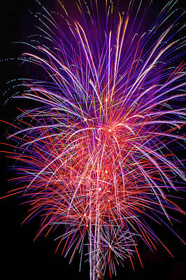 Photograph - Sparkling Fireworks by Garry Gay