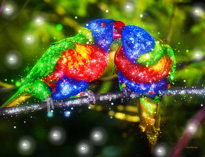 Photograph - Sparkling Lorikeet Parrots by Ericamaxine Price