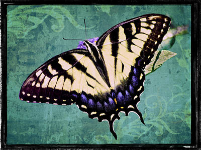 Photograph - Sparkling Tiger Swallowtail by Leda Robertson
