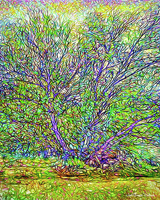 Digital Art - Sparkling Tree By The Lake - Boulder County Colorado by Joel Bruce Wallach