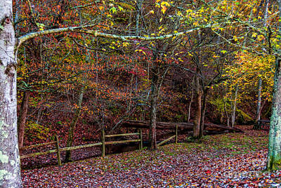 Sparkling With Colors - Natchez Trace Art Print