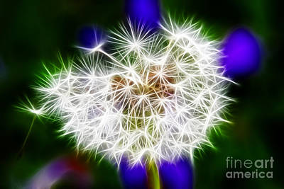 Visiting Digital Art - Sparkly Dandelion by Mariola Bitner