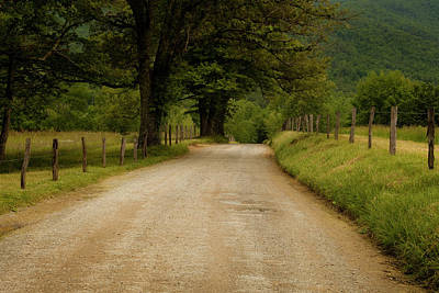Sparks Lane - Cades Cove Art Print