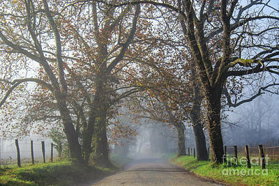 Photograph - Sparks Lane Early Morning by Jennifer Ludlum