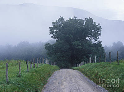 Gravel Road Photograph - Sparks Lane - Fm000117 by Daniel Dempster