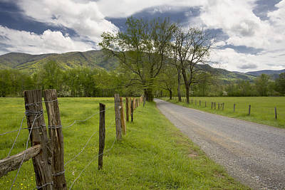 Sparks Lane In Cade Cove Art Print