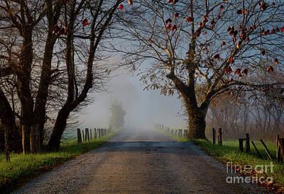 Photograph - Sparks Lane, Oct 2017 by Douglas Stucky