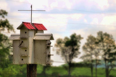 Photograph - Sparrow Hotel by JAMART Photography