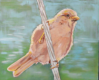 Sparrow On A Wire Original