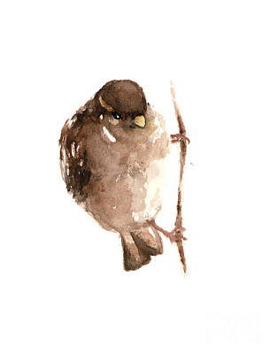 Sparrow Mixed Media - Sparrow Painting Watercolor Poster by Joanna Szmerdt