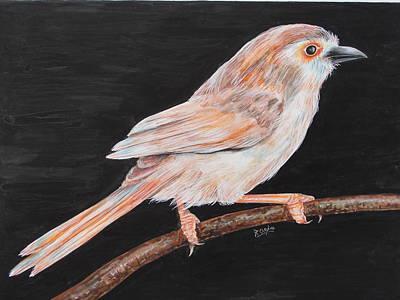 Sparrow Art Print by Rajesh Chopra