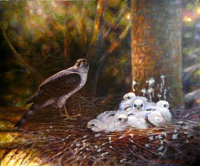 Wall Art - Painting - Sparrowhawk Family by Anna Franceova