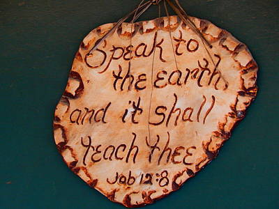 Photograph - Speak To The Earth by Virginia Kay White