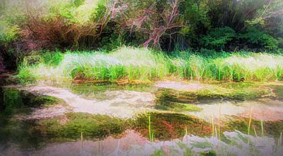 Digital Art - Spearfish Stream by Dave Luebbert
