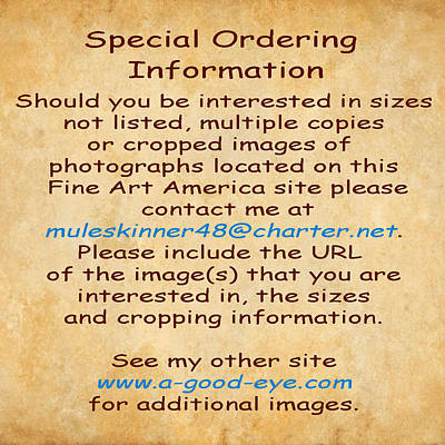 Photograph - Special Ordering Information by Greg Kluempers