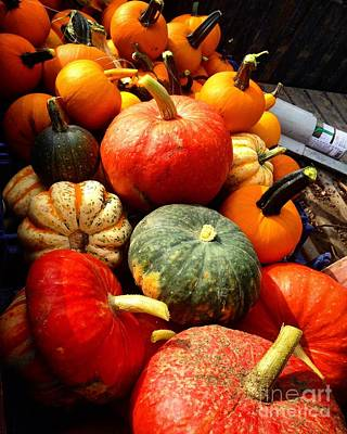 Photograph - Specialty Pumpkins by Angela Rath