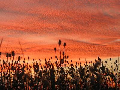 Art Print featuring the photograph Spectacular Sky On Fire by Maciek Froncisz