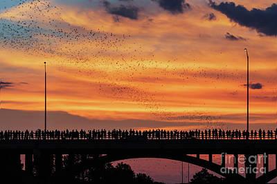 Photograph - Spectacular sunset to watch Austin's Congress Bridge Bats take f by Austin Bat Tours