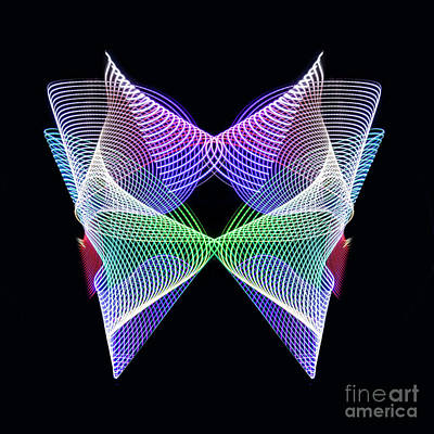 Photograph - Spectrum Butterfly by Brian Jones