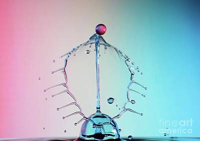 Drip Photograph - Spectrum by Heidi Southworth