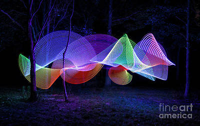 Photograph - Spectrum Trees by Brian Jones