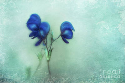 Azure Photograph - When The World Leaves You Speechless by Priska Wettstein