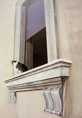 Spello Cat Original