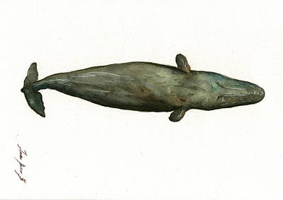 Sperm Whale Sleeping Original by Juan Bosco