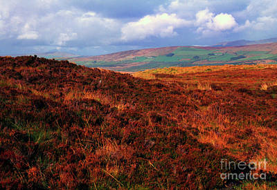 Photograph - Sperrin Mountain View by Thomas R Fletcher
