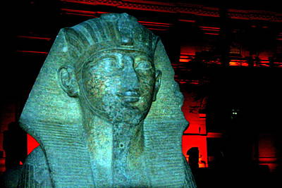 Photograph - Sphinx Head by Laurel Talabere