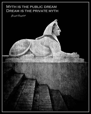 Photograph - Sphinx In Black And White by Patricia Strand