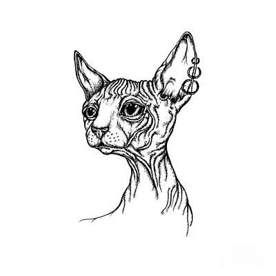 Drawing - Sphynx Portrait by Angel Ciesniarska