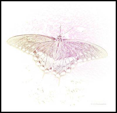 Photograph - Spicebush Butterfly In Subtle Light by A Gurmankin