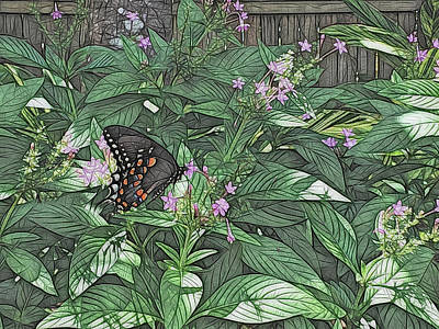 Photograph - Spicebush Swallowtail Butterfly Artistic  by Aimee L Maher ALM GALLERY