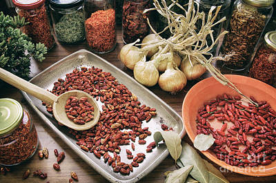 Spices And Herbs Print by Carlos Caetano