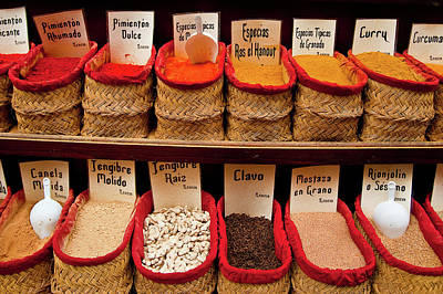 Photograph - Spices  by Harry Spitz