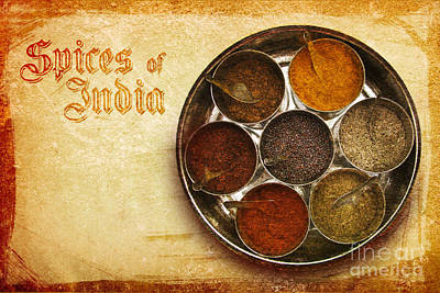 Spice Box Photograph - Spices Of India II by Prajakta P