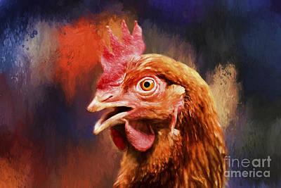 Spicy Chicken Art Print by Darren Fisher