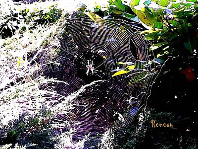 Photograph - Spider And Web 2 by Sadie Reneau