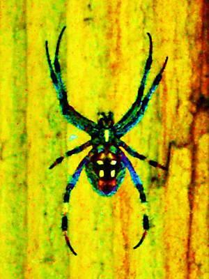 Spider Art Print by Daniele Smith