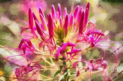 Digital Art - Spider Flower by Eva Lechner