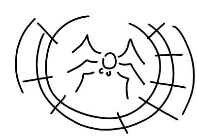 Spin Drawing - Spider by Lineamentum