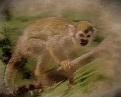 Mixed Media - Spider Monkey by Teresa Wilson